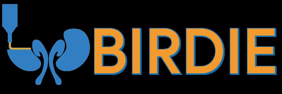 BIRDIE Project Website